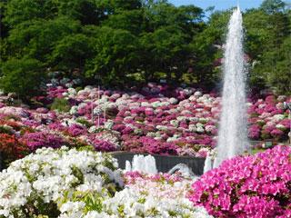 「西山公園」福井県鯖江市