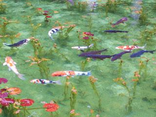 「モネの池」岐阜県関市