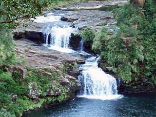 「マリユドゥの滝」沖縄県竹富町<西表島>