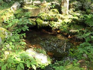 滝尾神社「運だめしの鳥居」栃木県日光市