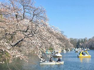 井の頭恩賜公園「井の頭池」東京都三鷹市