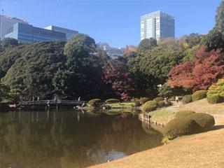 「新宿御苑」東京都新宿区