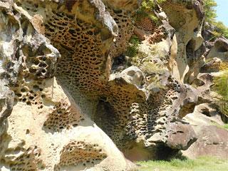 「高池の虫喰岩」和歌山県古座川町